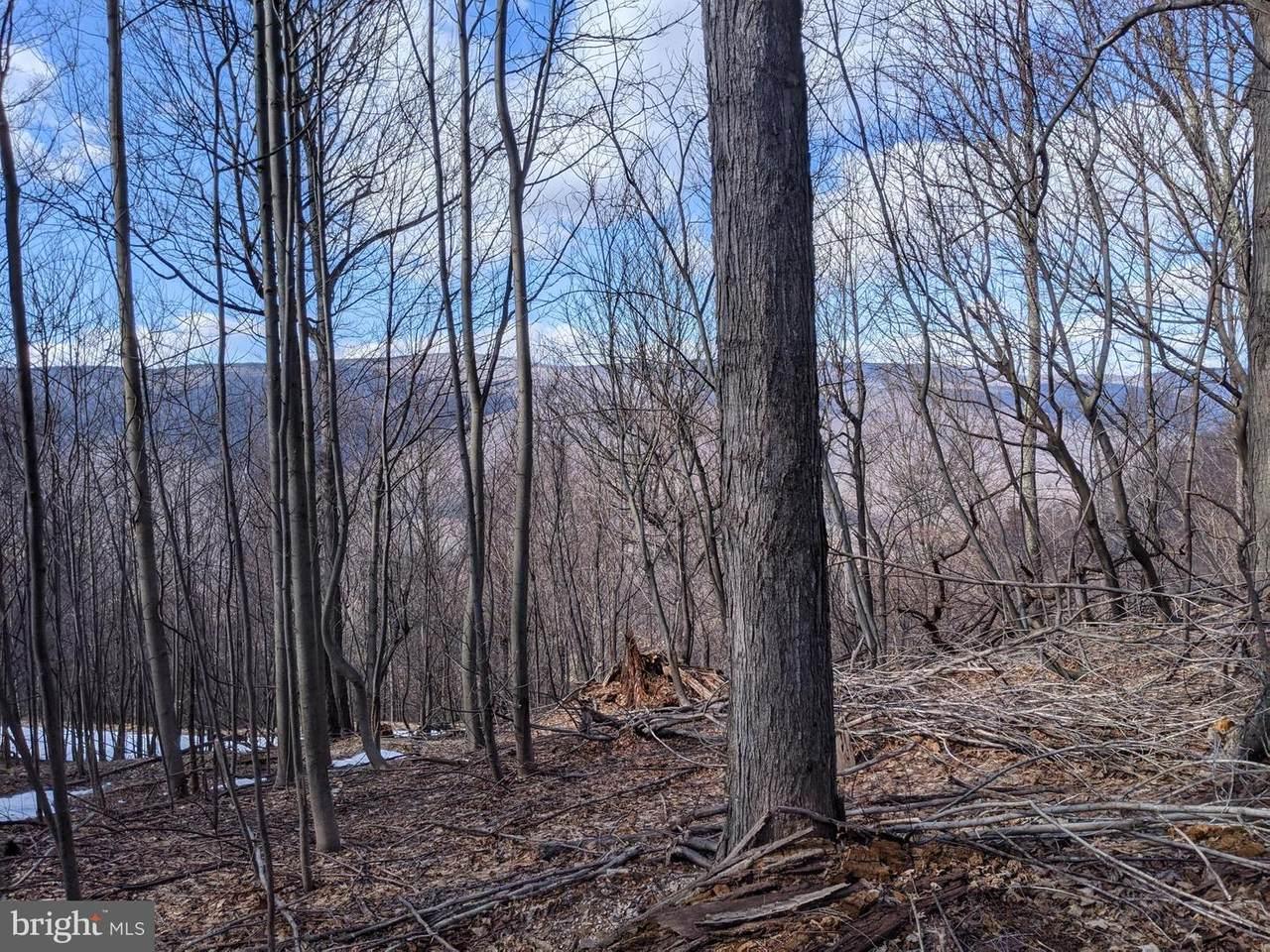 32 Bear Ridge Road - Photo 1
