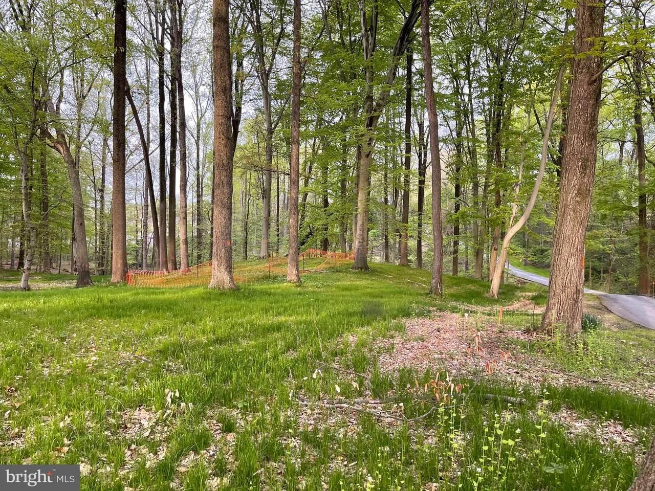 100 Timber Ridge Lane - Photo 1