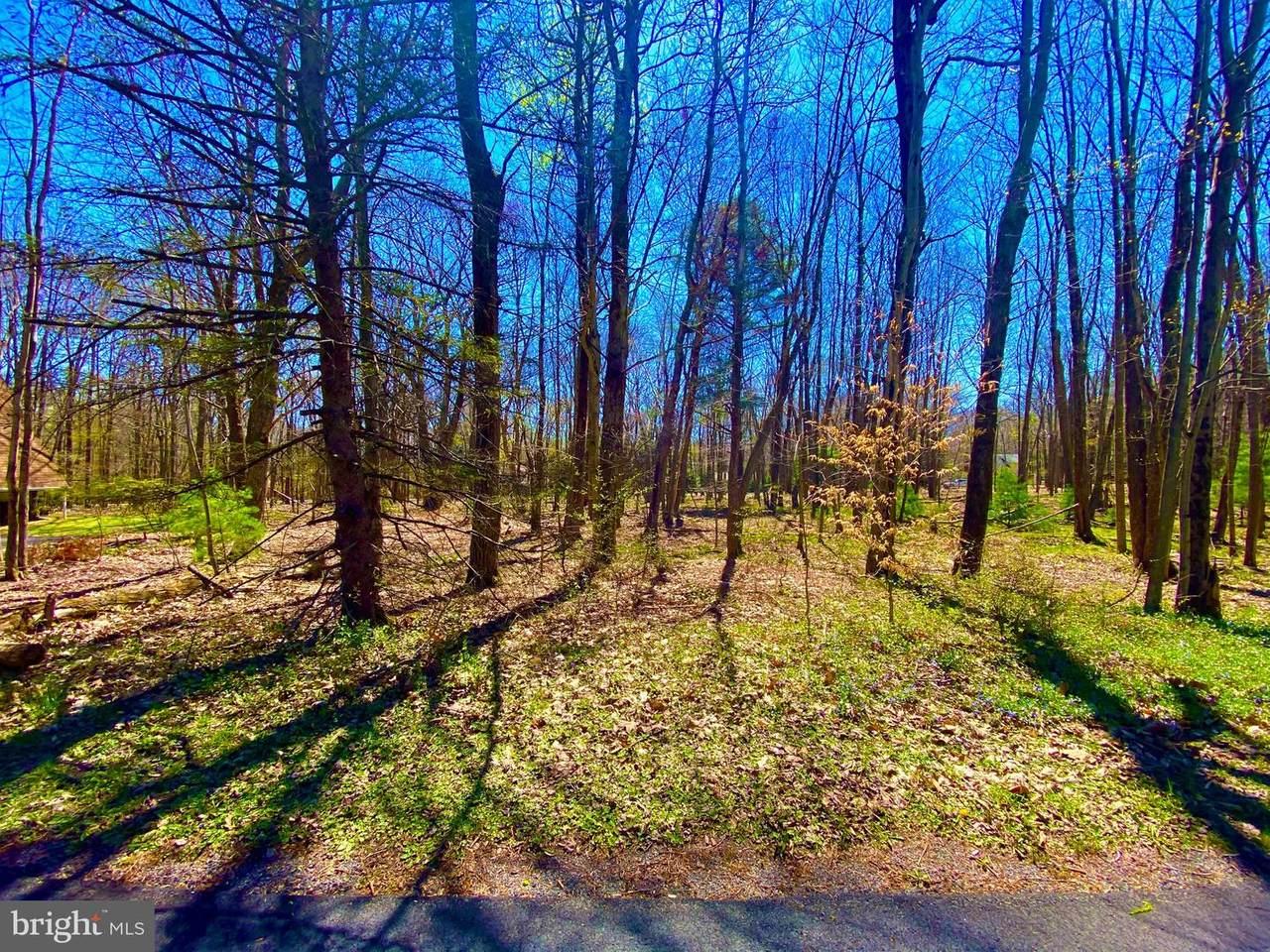 Lake Drive - Photo 1