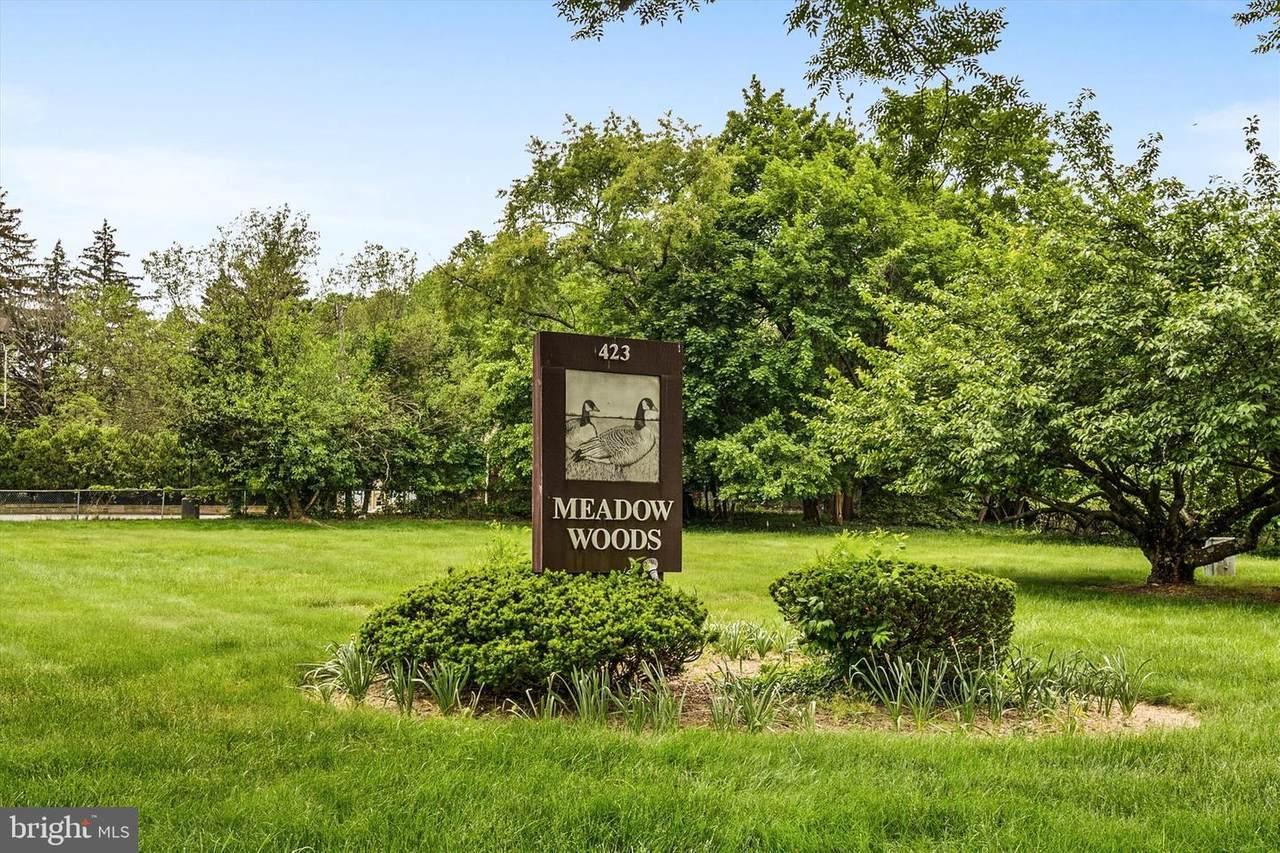 423 Meadow Woods Lane - Photo 1