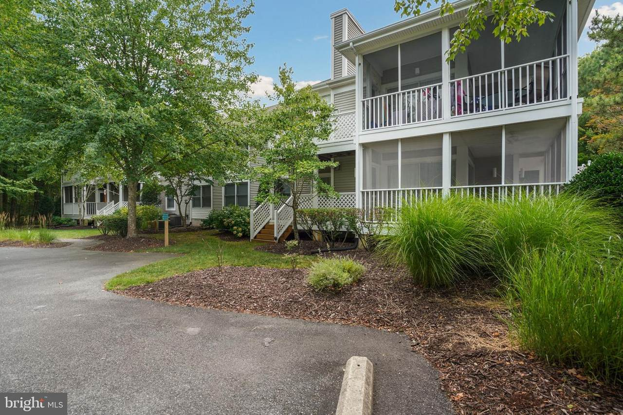 33506 Canal Court - Photo 1