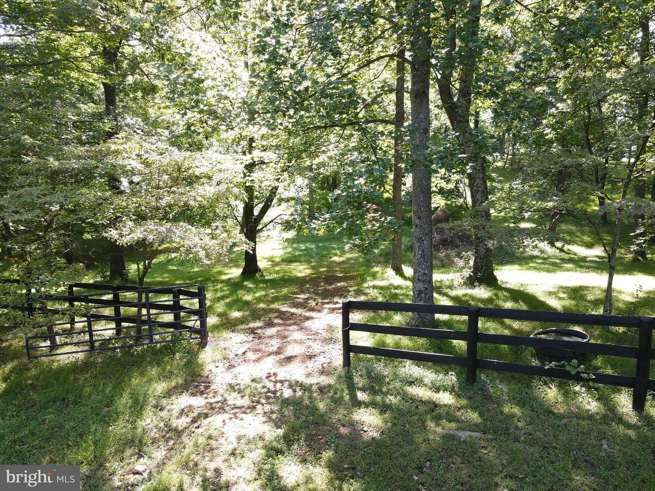 Evergreen Mountain Rd - Photo 1