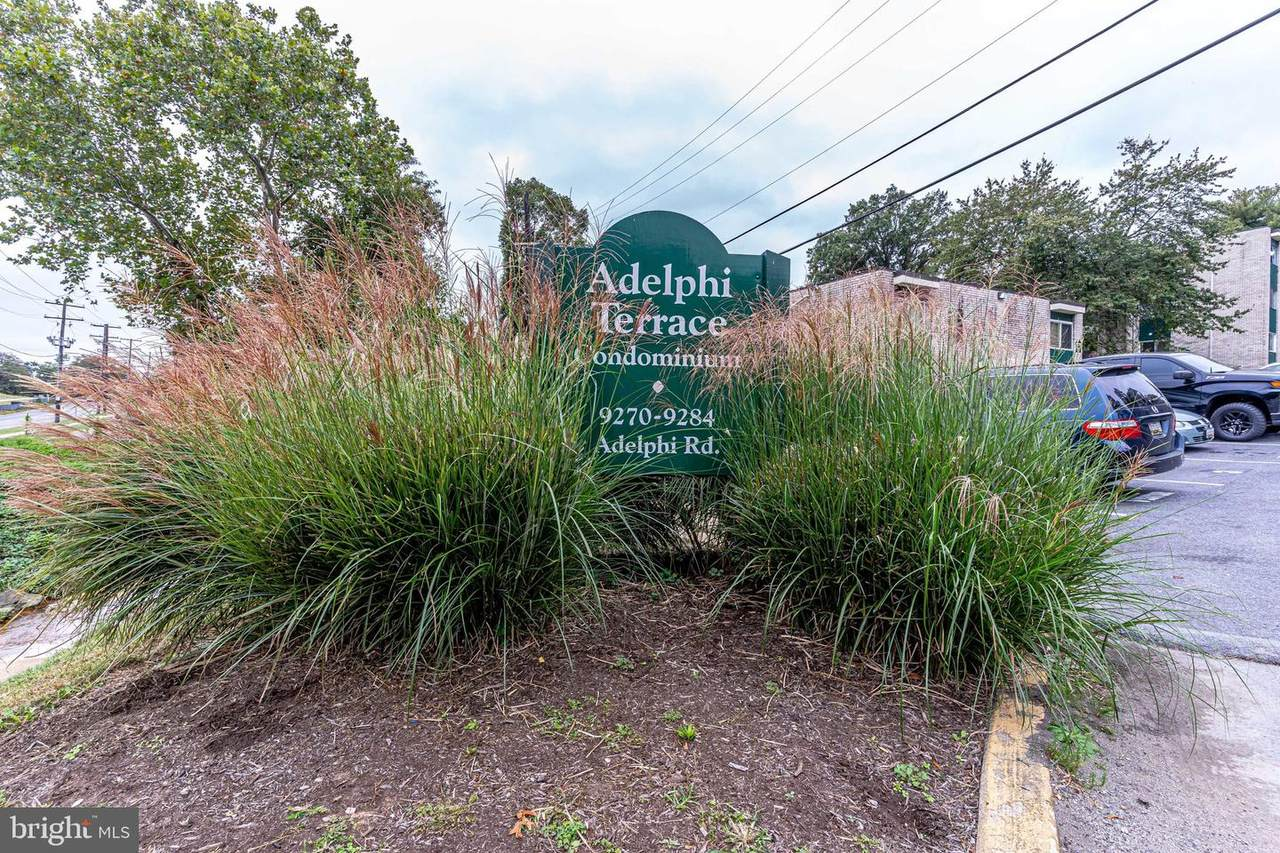 9272 Adelphi Road - Photo 1