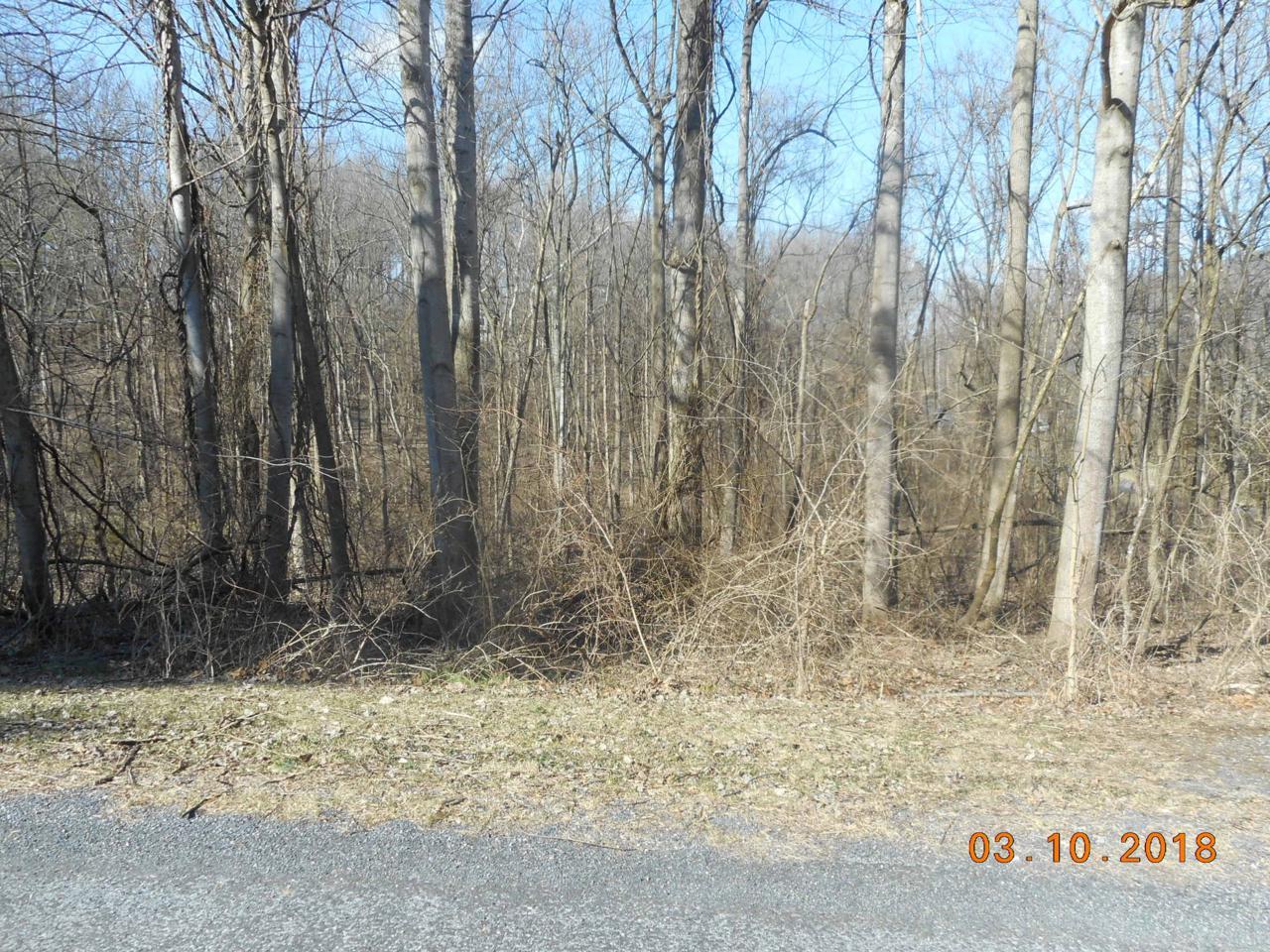 4 Meadow Lark Trail - Photo 1
