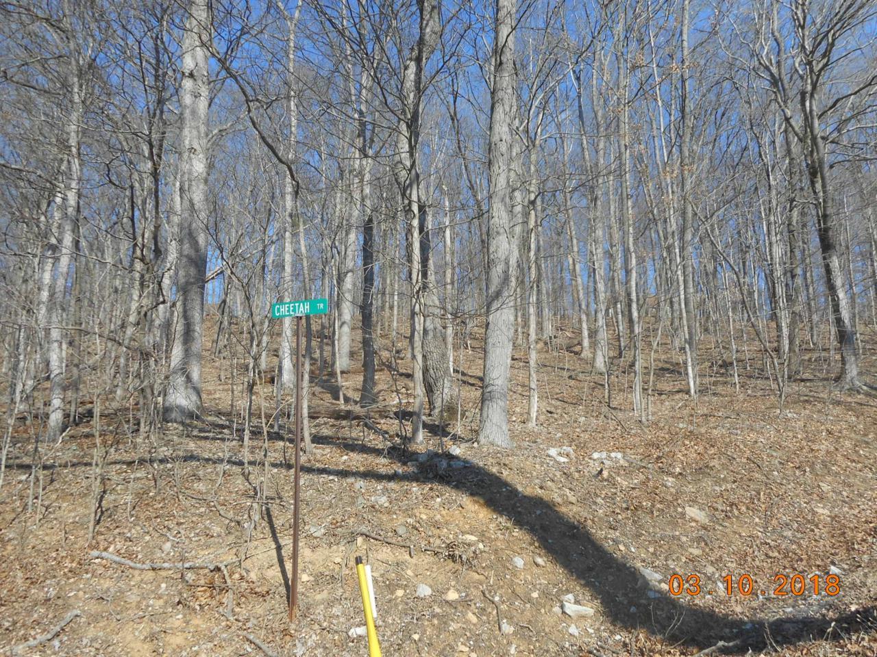 768 Country Club Trail - Photo 1