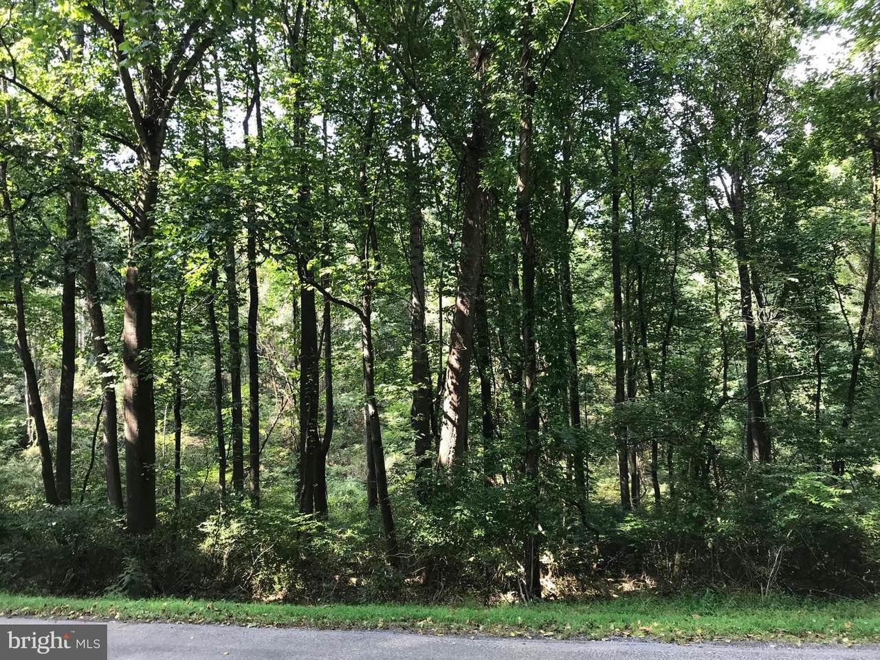 8 Meadow Lark Trail - Photo 1
