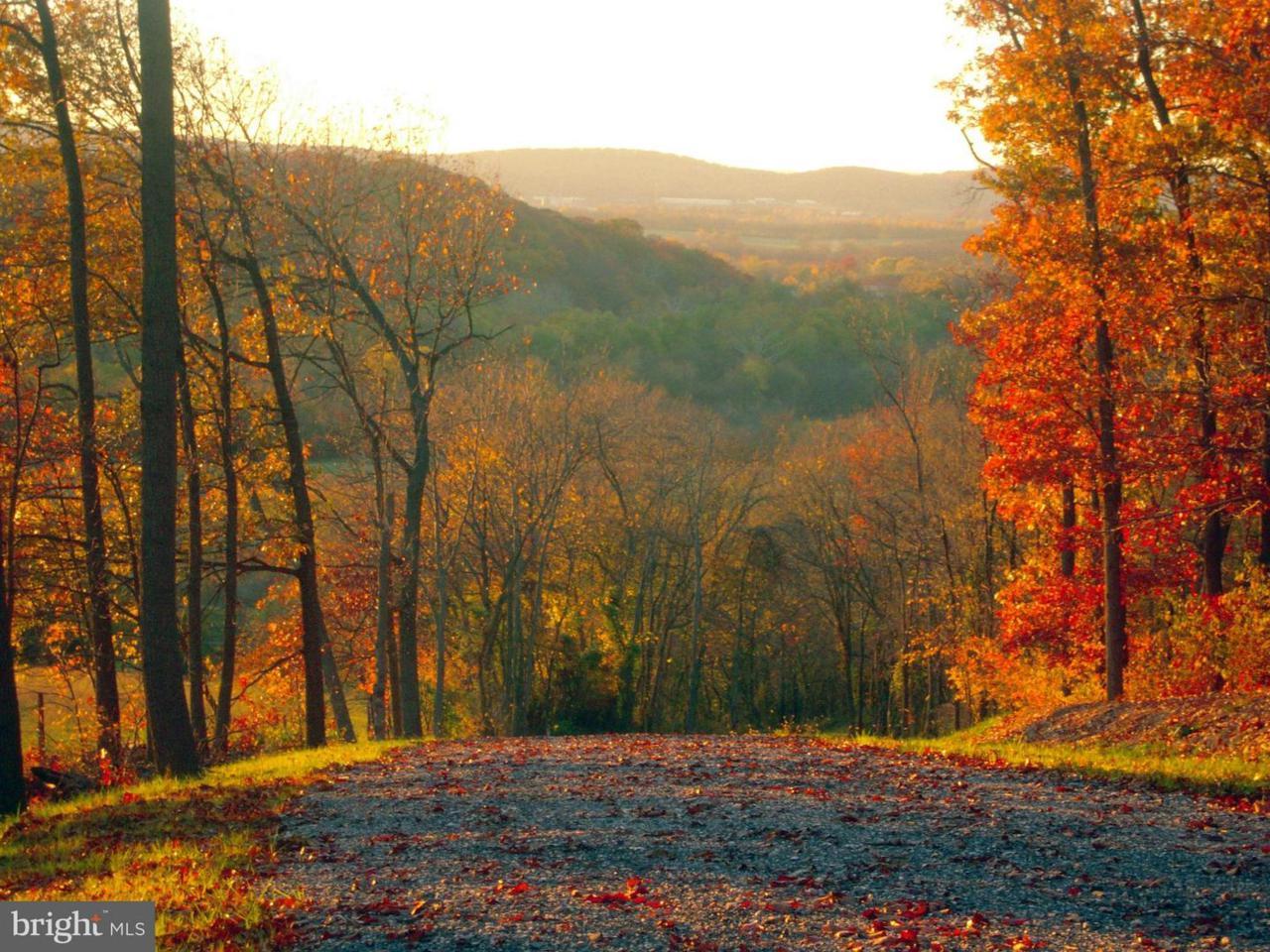 3411 Flint Hill Road - Photo 1