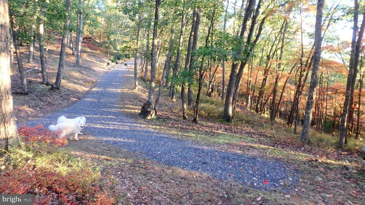 258 Nathaniel Mountain Road - Photo 1