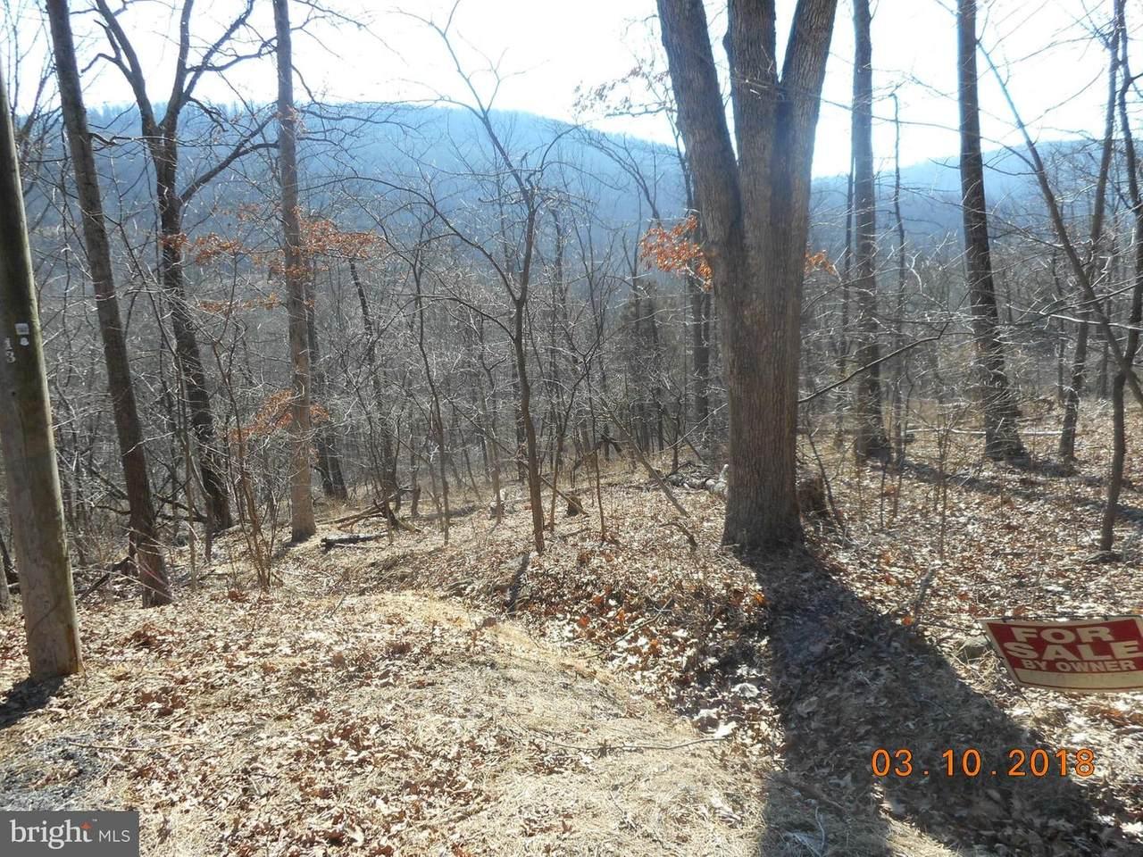 13 Thrush Trail - Photo 1