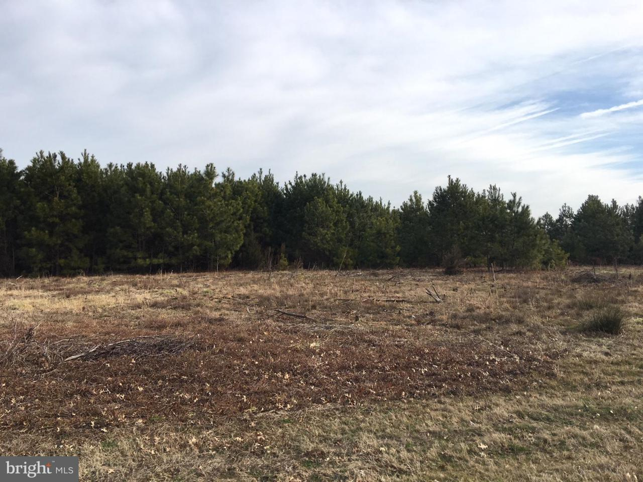 0 Siloam & Campground Road - Photo 1