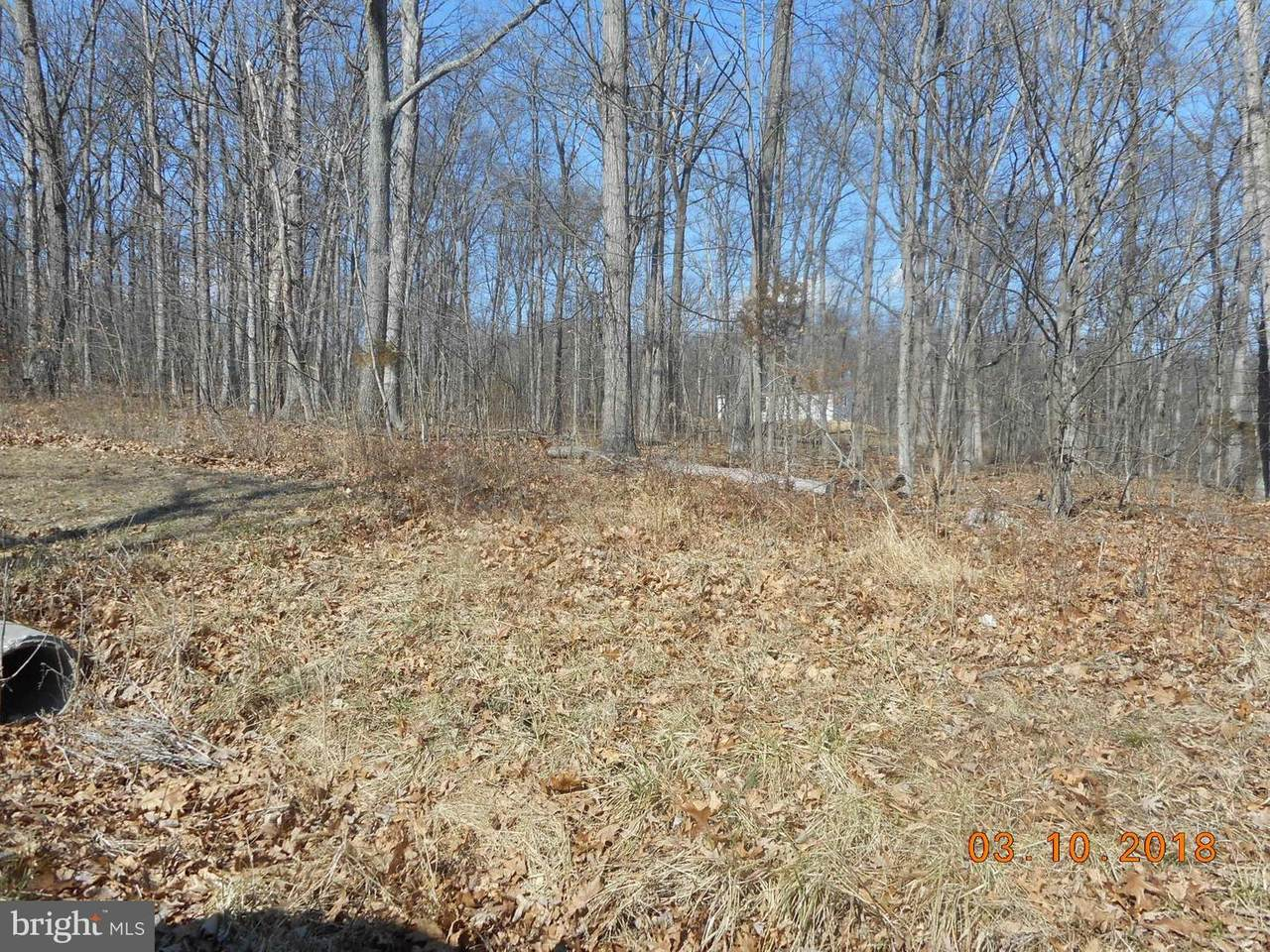 5 Sidetrack Trail - Photo 1