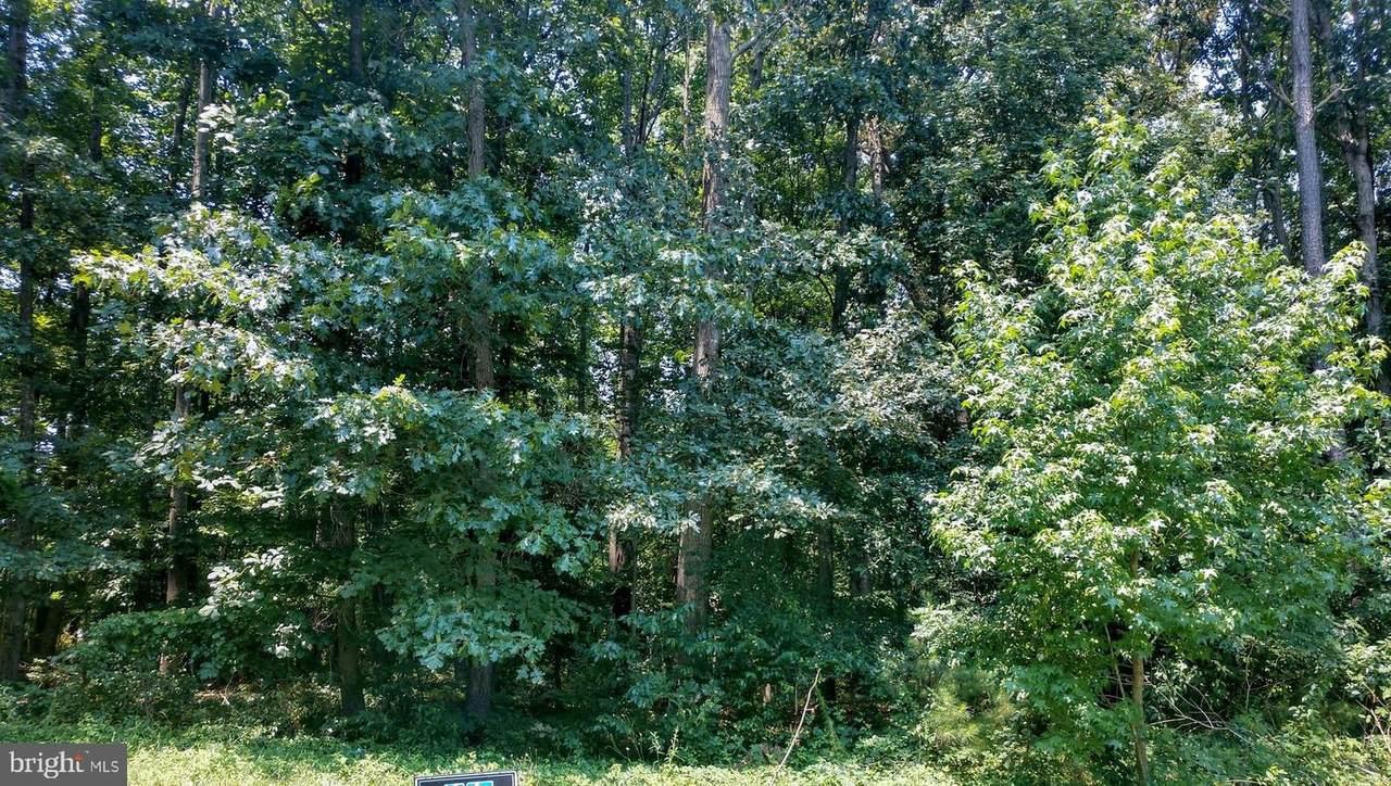 Lot 45 Hickory Cove Road - Photo 1