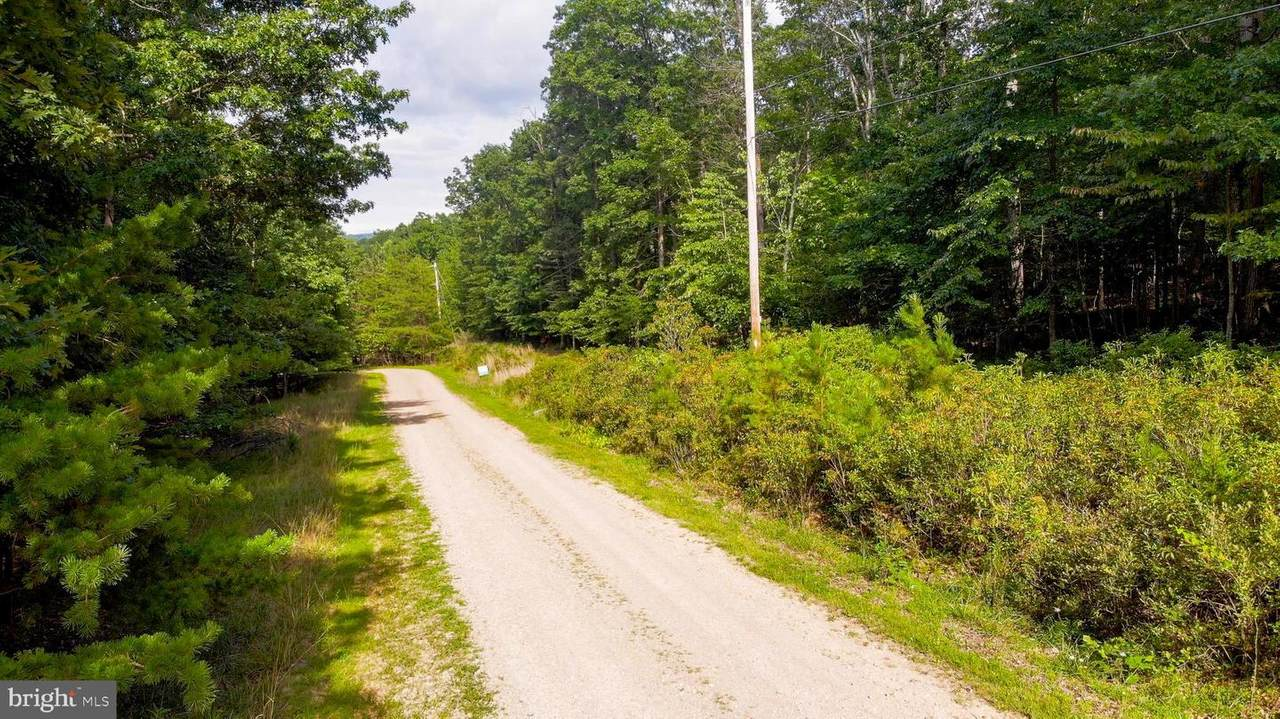 Wooded Lane - Photo 1