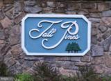 Tall Pines Drive - Photo 2