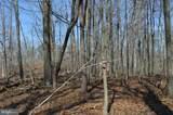 Little Creek Trail - Photo 14