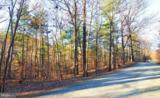 Lot 293A-LOT 293A Drummer Hill Road - Photo 2