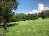 295 Hollow Horn Road - Photo 9