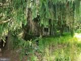 Owls Hollow - Photo 12
