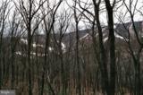 13571 Blairs Valley Road - Photo 27