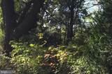 1355 Seminole Trail - Photo 3