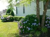 38352 Virginia Drive - Photo 28