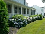 38352 Virginia Drive - Photo 30