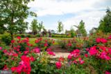 23555 Hopewell Manor Terrace - Photo 12