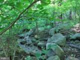 0 Audubon Trail - Photo 2
