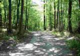 LOT 2 Five Forks Lane - Photo 1