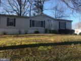 46464 Sue Drive - Photo 2