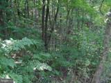9 Potomac Woods - Photo 2