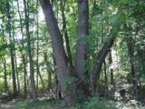 9 Potomac Woods - Photo 5