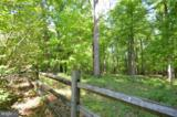 2931 Snake Hill Road - Photo 29