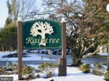 203 Raintree Lane - Photo 25