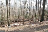 307 Stag Trail - Photo 1