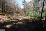 Pine Wood Trail - Photo 10