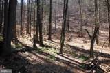 Pine Wood Trail - Photo 11
