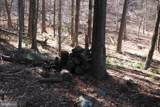 Pine Wood Trail - Photo 12