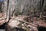 Pine Wood Trail - Photo 15