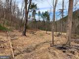 Pine Wood Trail - Photo 26
