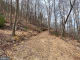 Pine Wood Trail - Photo 29