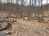 Pine Wood Trail - Photo 4