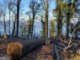 LOT 49 Osprey View Lane - Photo 1