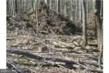 Driftwood Drive - Photo 5