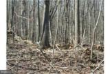 Driftwood Drive - Photo 6
