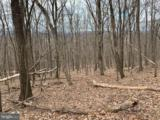 Lot 5 Monroe Mountain Road - Photo 24