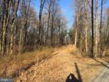 41 Blue Mountain Road - Photo 3