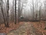 Wildwood Lane - Photo 2