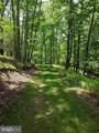 311 Bear Cub Trail - Photo 9