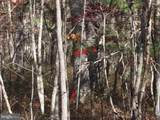 4215 Page Valley Road - Photo 35
